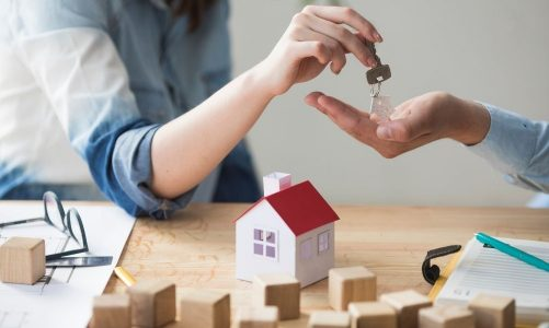 Property, Investing, and Technological Innovation